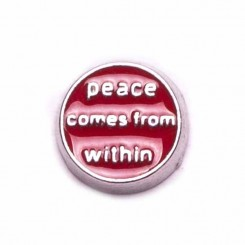 Peace Comes from Within
