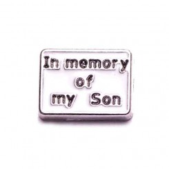In Memory of my Son