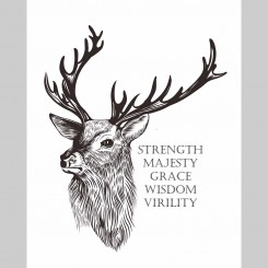 Stag (jpeg file) 8x10 inch