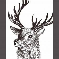 Stag (jpeg file only) 8x10